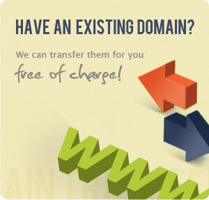 Have an existing domain? We can transfer them for you free of charge!